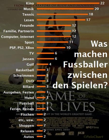 umfrage profis schweiz