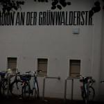 gruenwalder2013 (53)